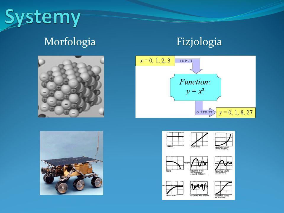 Morfologia Fizjologia