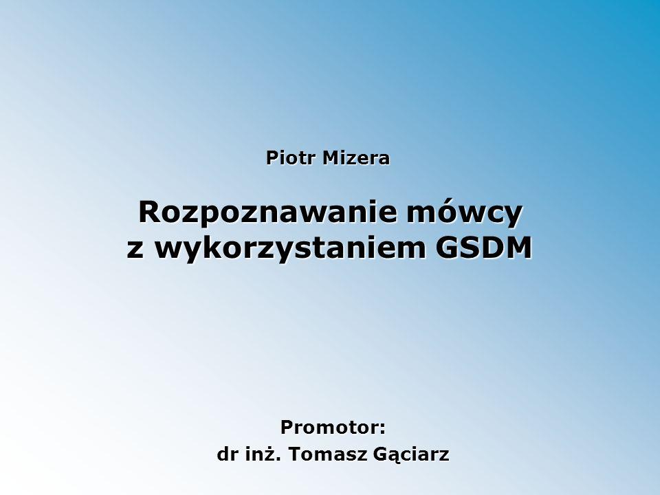Rozpoznawanie mówcy z wykorzystaniem GSDM