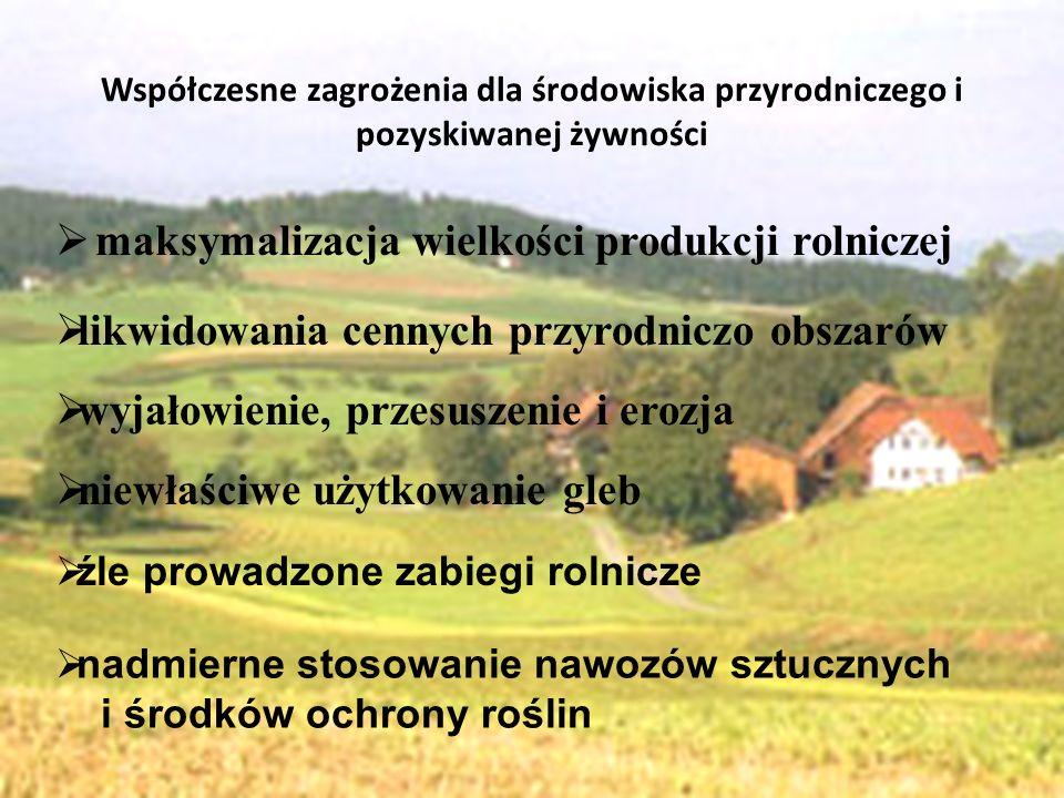 maksymalizacja wielkości produkcji rolniczej