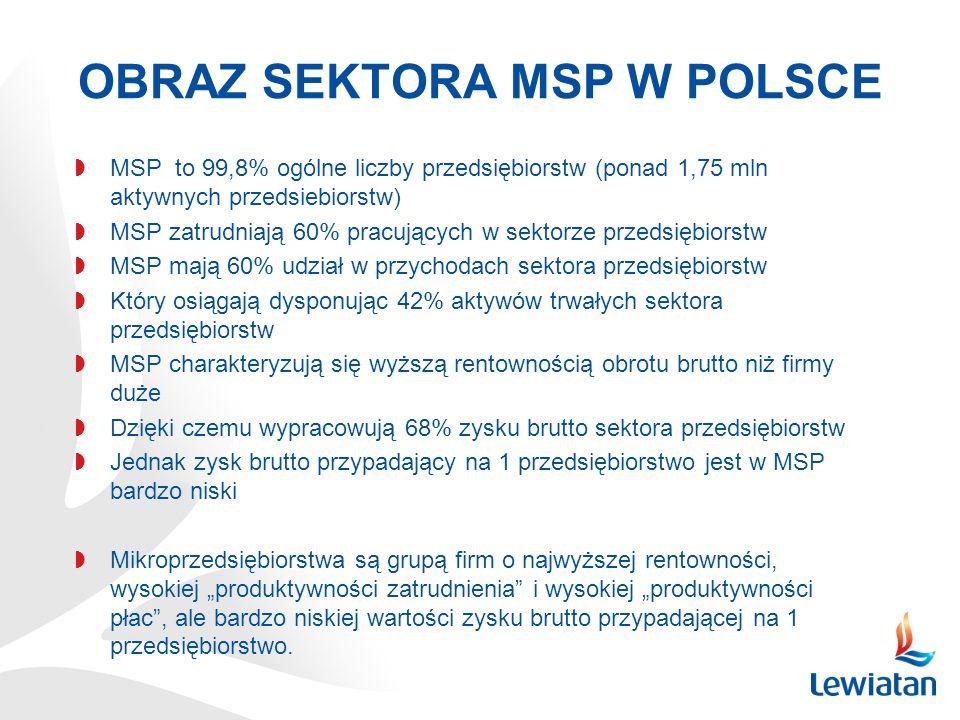 OBRAZ SEKTORA MSP W POLSCE