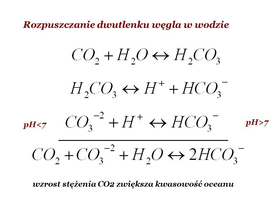 Rozpuszczanie dwutlenku węgla w wodzie