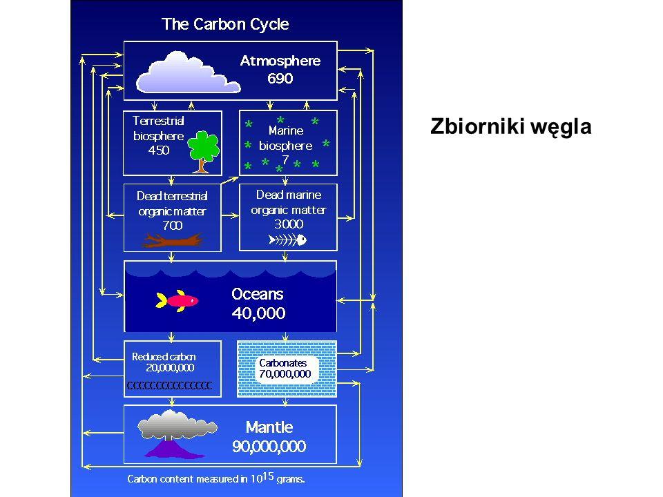 Zbiorniki węgla