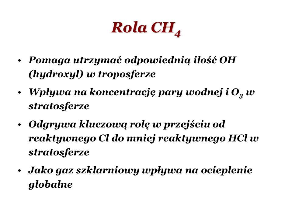 Rola CH4 Pomaga utrzymać odpowiednią ilość OH (hydroxyl) w troposferze