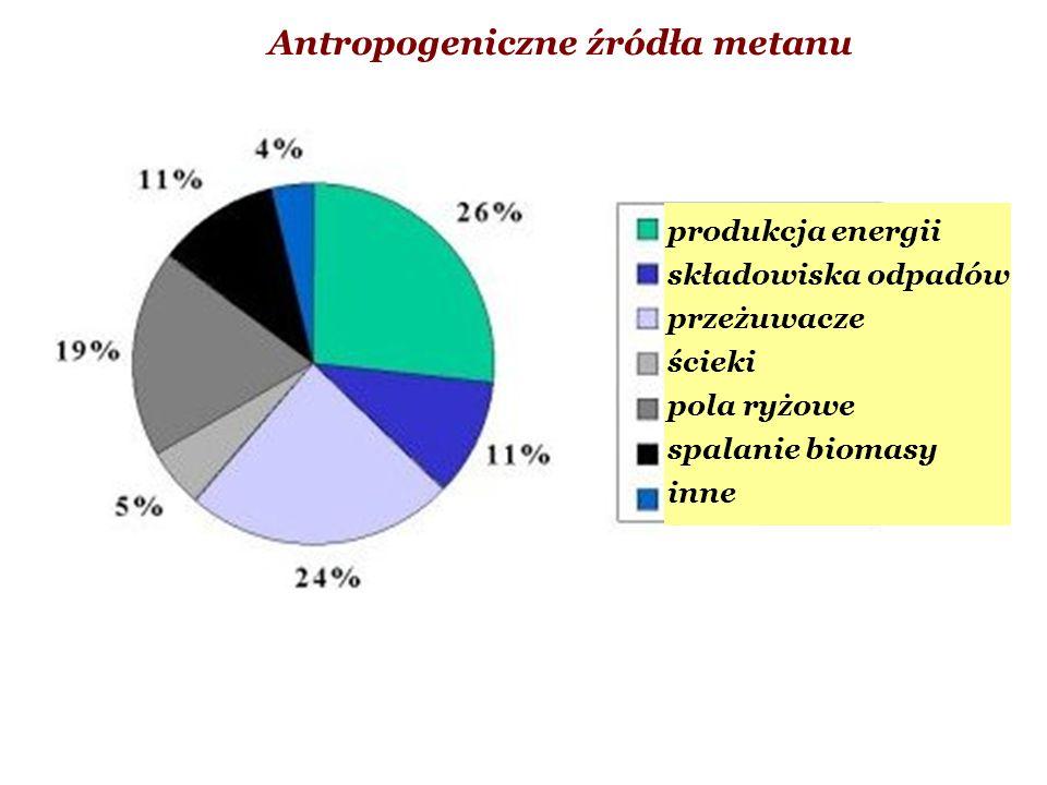Antropogeniczne źródła metanu