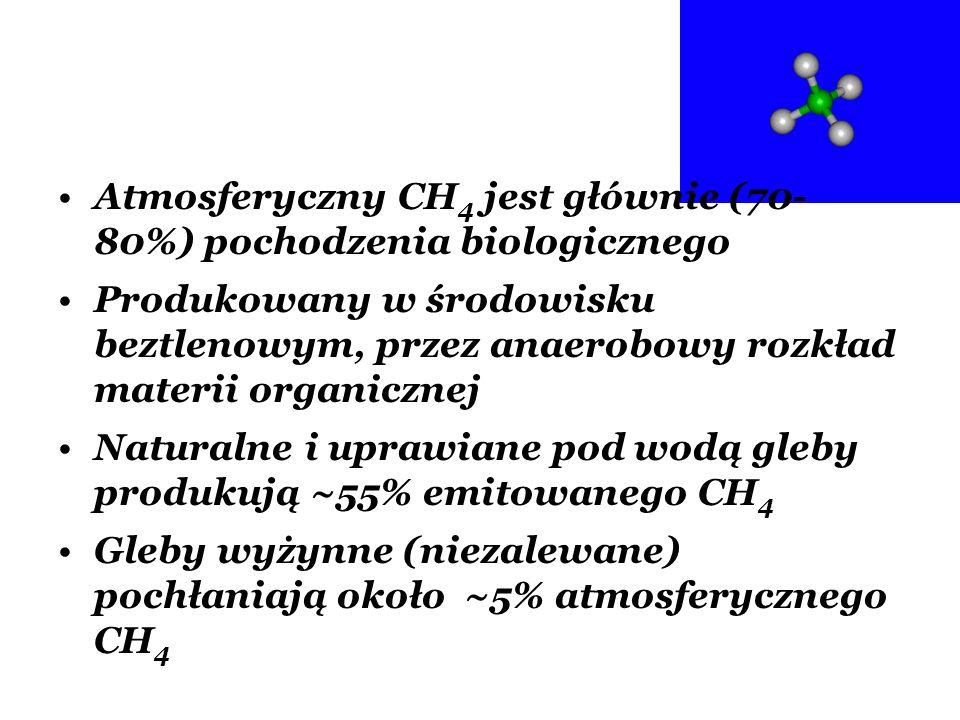 Atmosferyczny CH4 jest głównie (70-80%) pochodzenia biologicznego