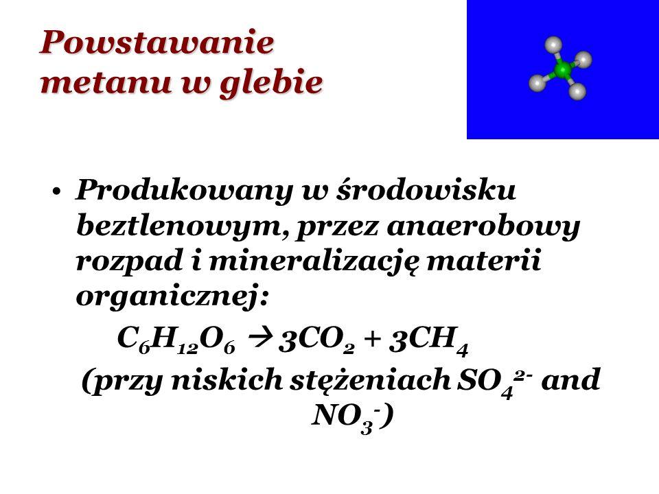 Powstawanie metanu w glebie