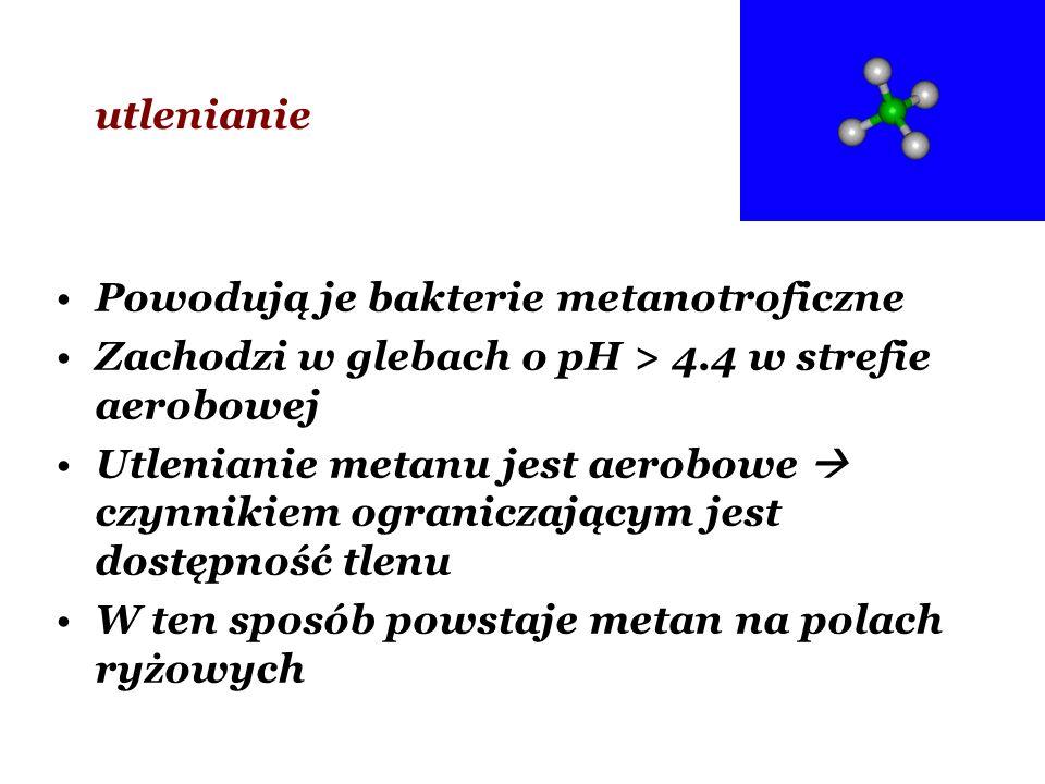 utlenianie Powodują je bakterie metanotroficzne. Zachodzi w glebach o pH > 4.4 w strefie aerobowej.