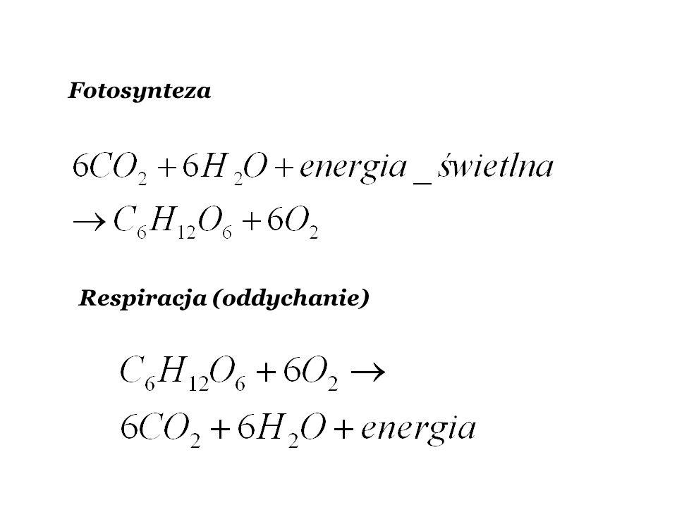 Fotosynteza Respiracja (oddychanie)