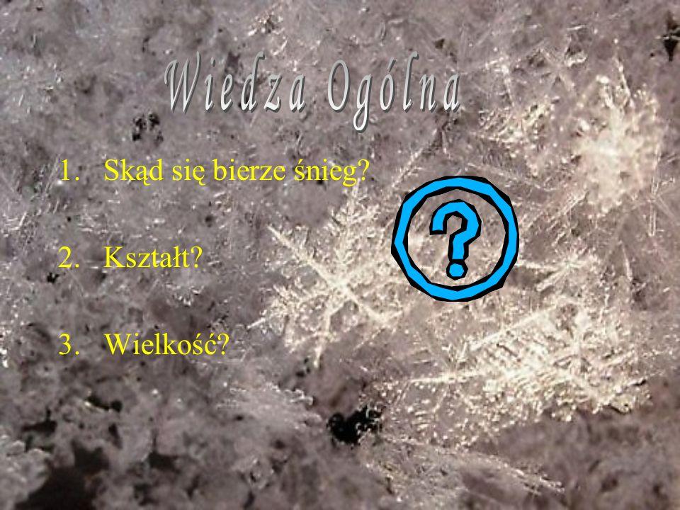 Wiedza Ogólna Skąd się bierze śnieg Kształt Wielkość