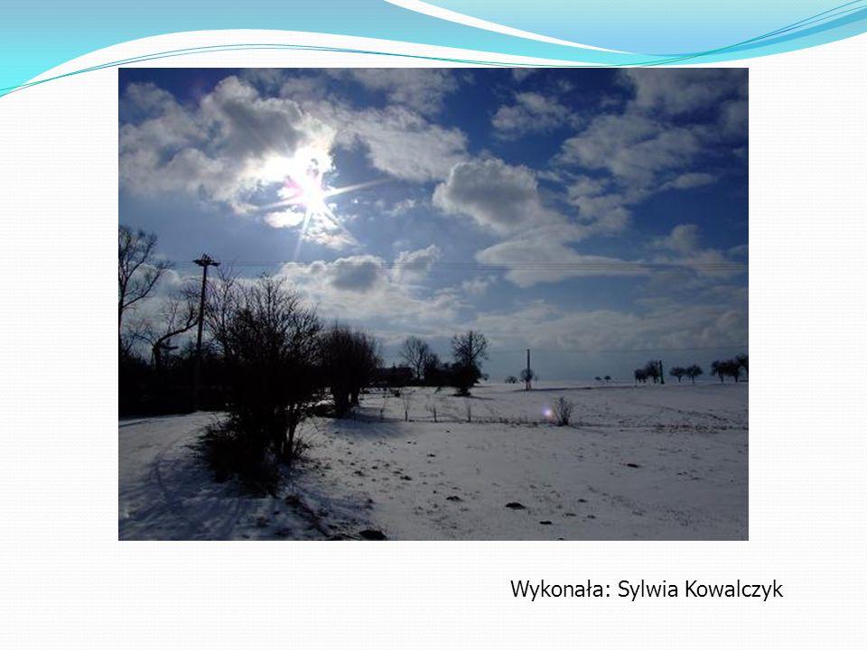 Wykonała: Sylwia Kowalczyk