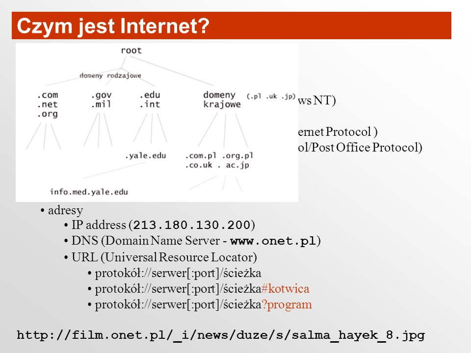 Czym jest Internet Local Area Network (LAN) Wide Area Network (WAN)