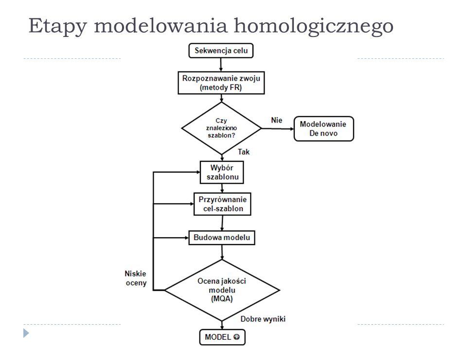 Etapy modelowania homologicznego