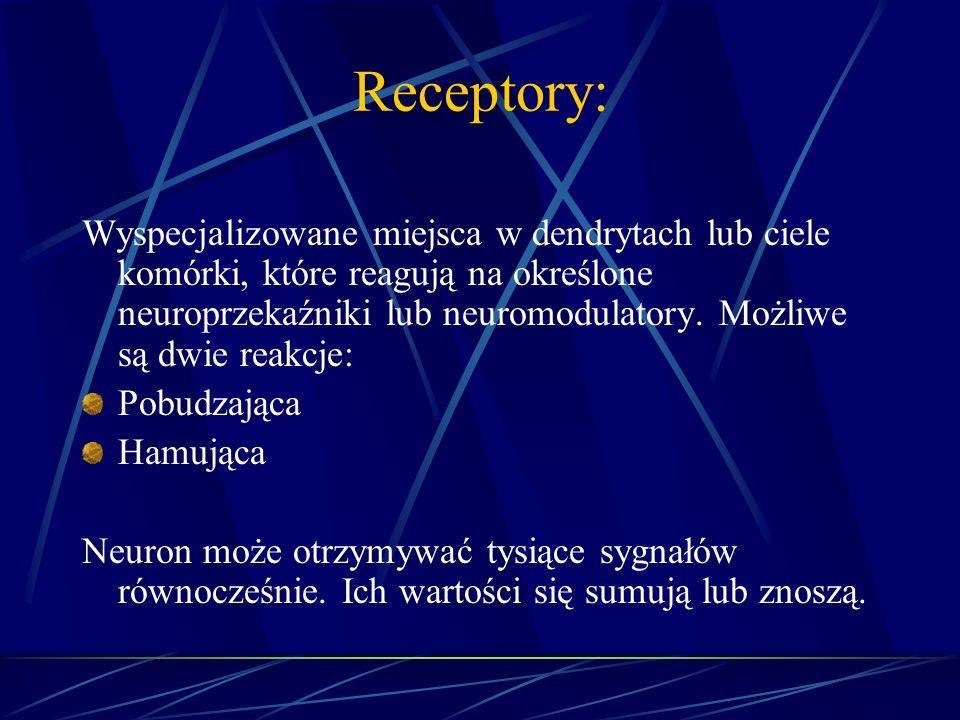 Receptory: