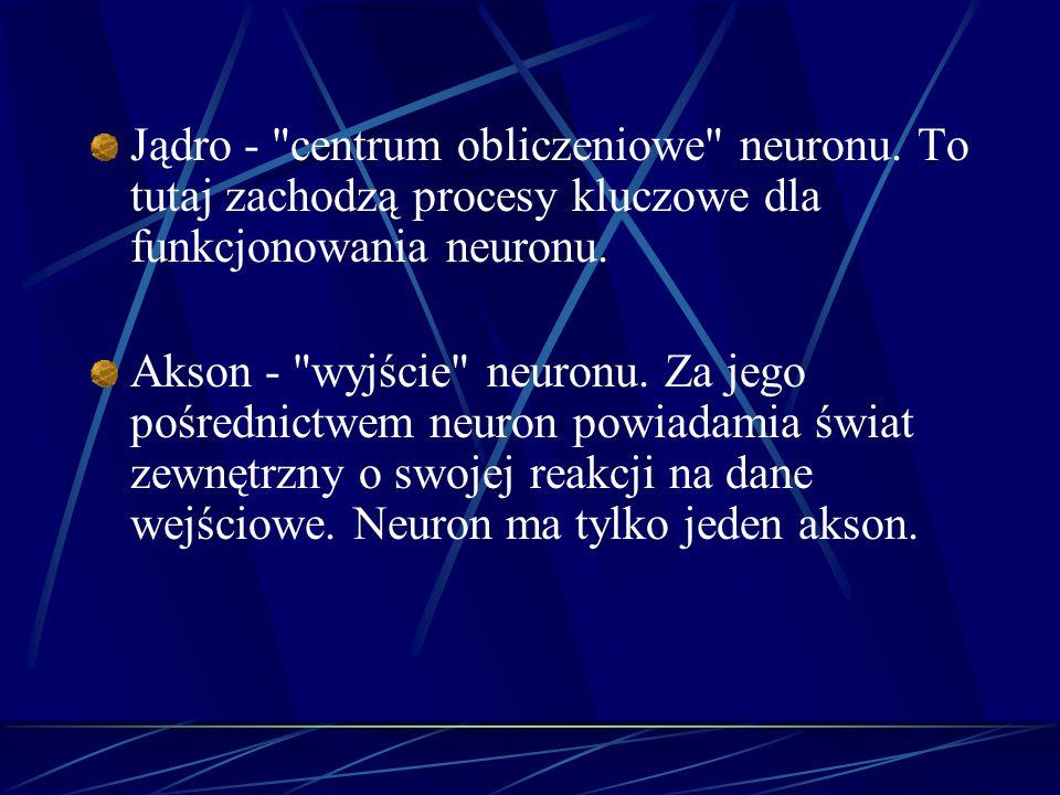 Jądro - centrum obliczeniowe neuronu