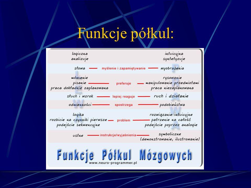 Funkcje półkul: