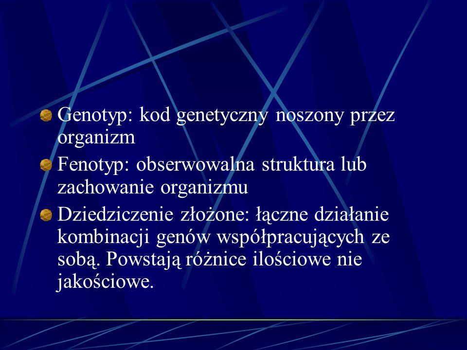 Genotyp: kod genetyczny noszony przez organizm