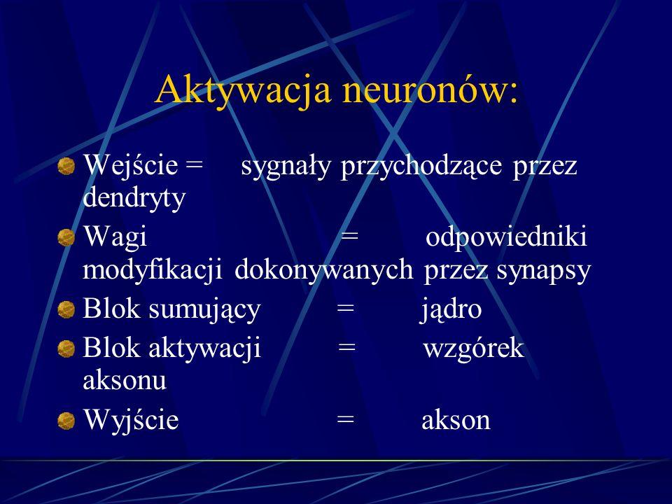 Aktywacja neuronów: Wejście = sygnały przychodzące przez dendryty