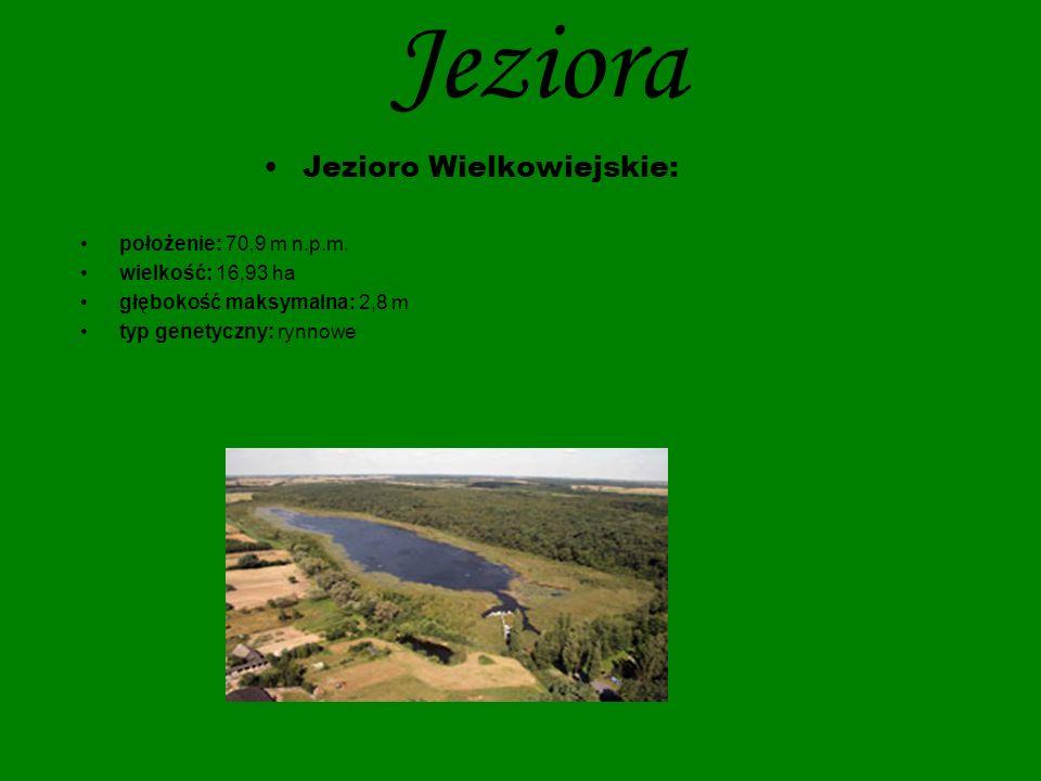 Jezioro Wielkowiejskie: