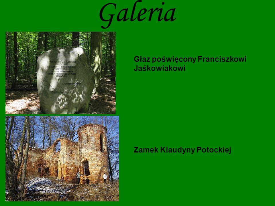 Głaz poświęcony Franciszkowi Jaśkowiakowi Zamek Klaudyny Potockiej