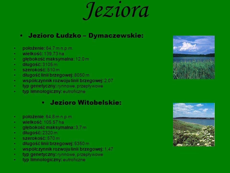 Jezioro Łudzko – Dymaczewskie:
