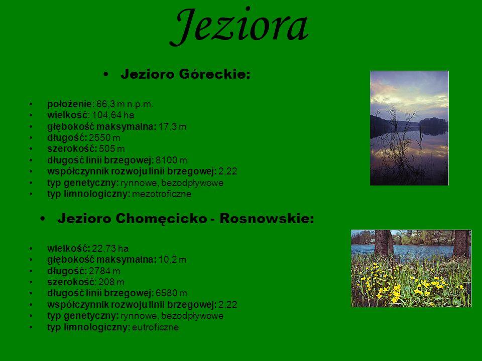Jezioro Chomęcicko - Rosnowskie: