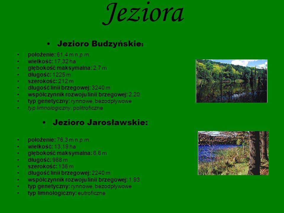 Jezioro Jarosławskie: