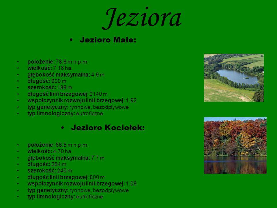 Jeziora Jezioro Małe: Jezioro Kociołek: położenie: 78,6 m n.p.m.