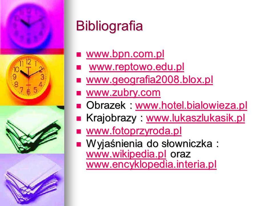 Bibliografia www.bpn.com.pl www.reptowo.edu.pl