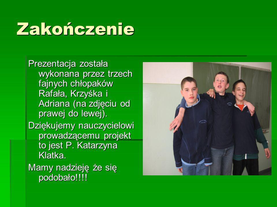 Zakończenie Prezentacja została wykonana przez trzech fajnych chłopaków Rafała, Krzyśka i Adriana (na zdjęciu od prawej do lewej).