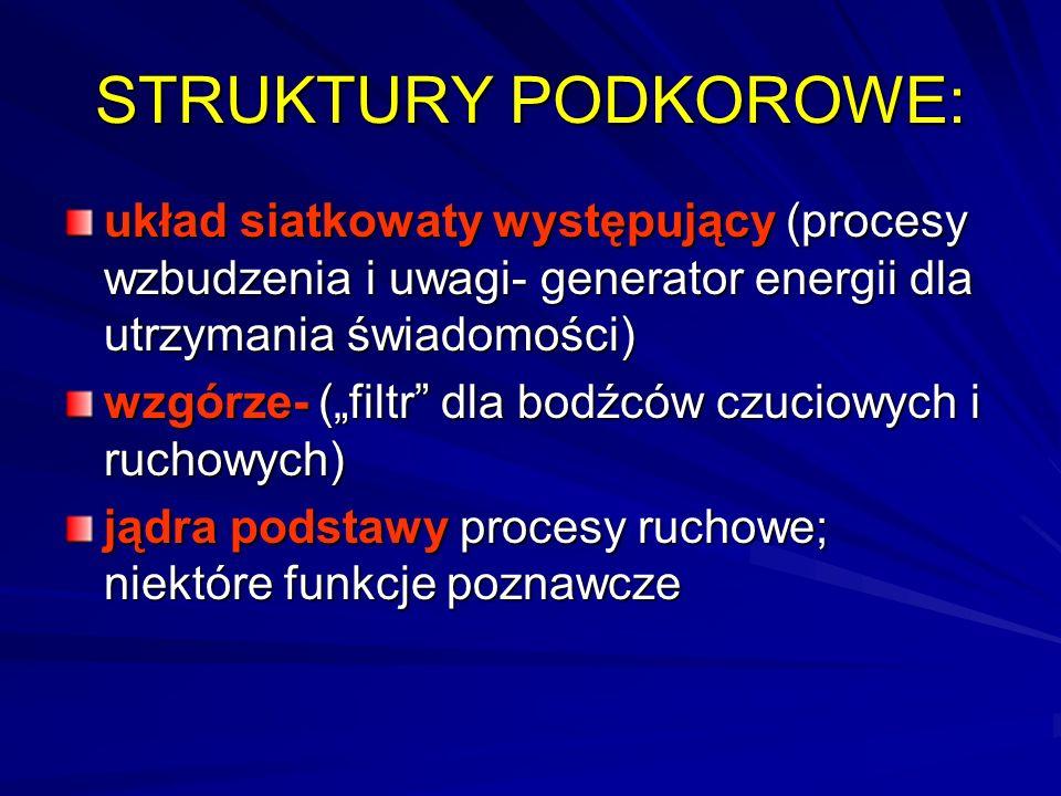 STRUKTURY PODKOROWE: układ siatkowaty występujący (procesy wzbudzenia i uwagi- generator energii dla utrzymania świadomości)