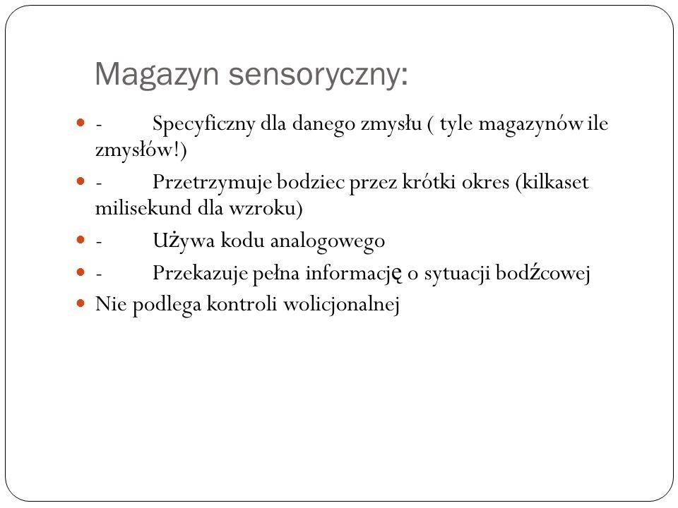 Magazyn sensoryczny: - Specyficzny dla danego zmysłu ( tyle magazynów ile zmysłów!)