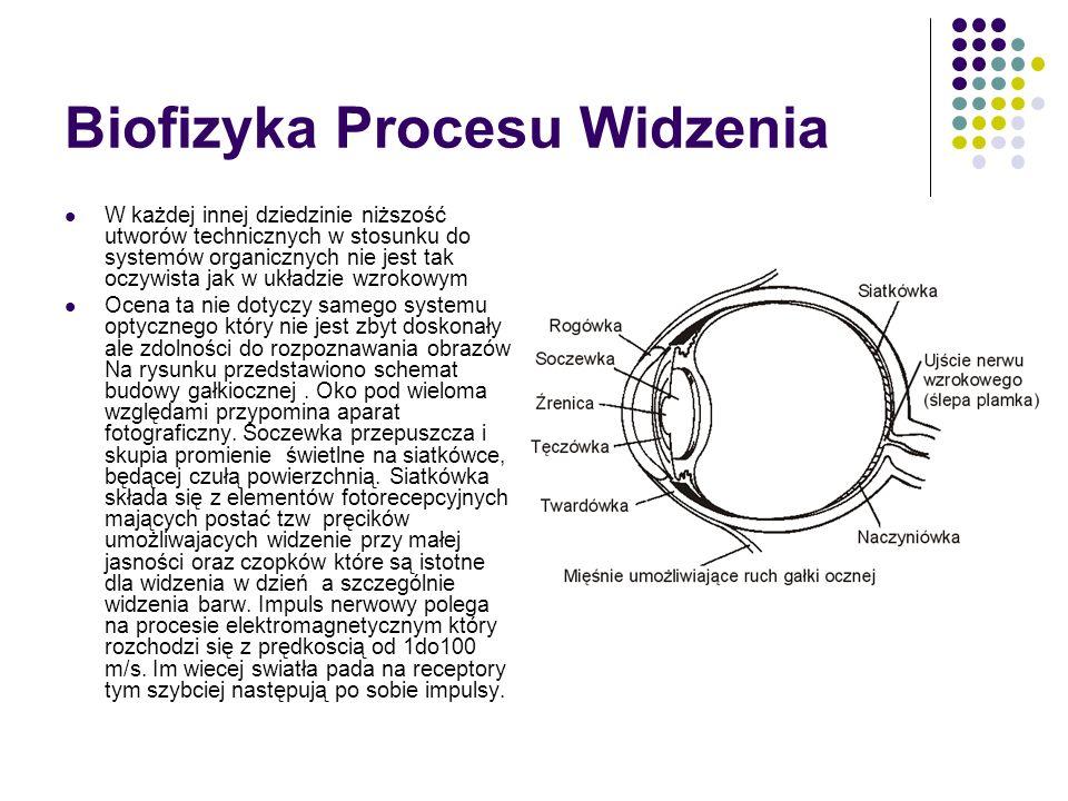 Biofizyka Procesu Widzenia