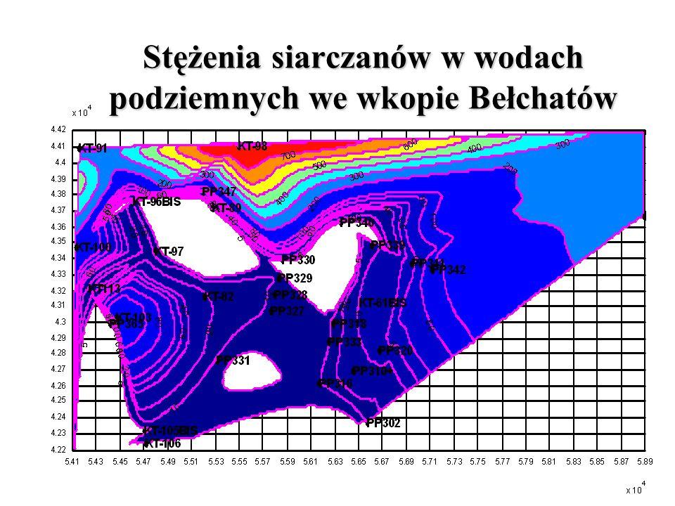 Stężenia siarczanów w wodach podziemnych we wkopie Bełchatów