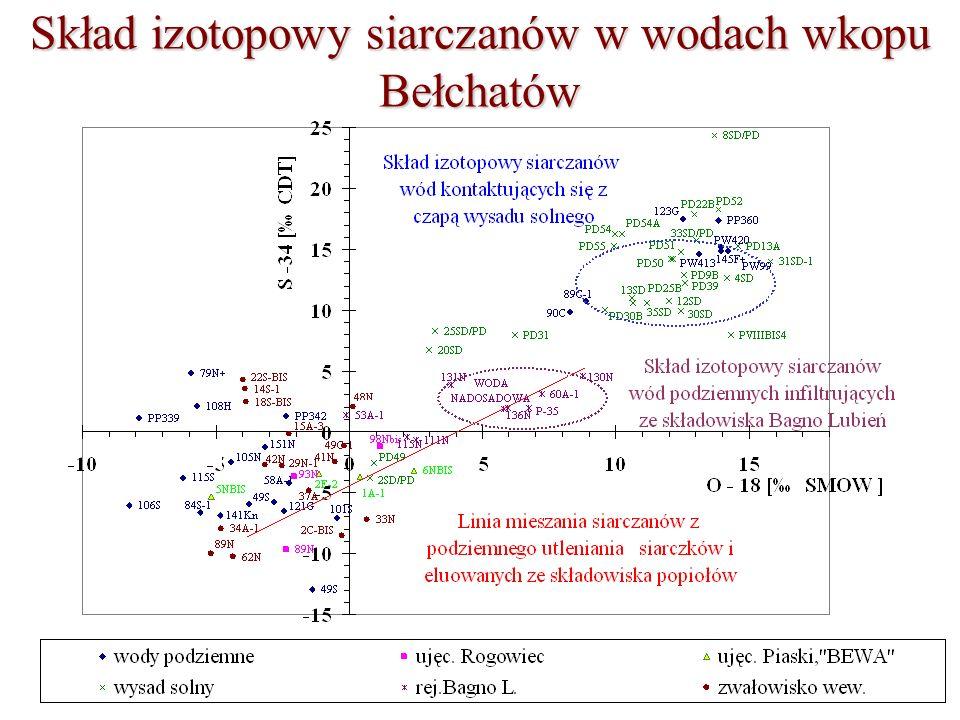 Skład izotopowy siarczanów w wodach wkopu Bełchatów