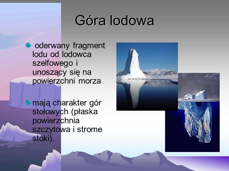 Góra lodowa oderwany fragment lodu od lodowca szelfowego i unoszący się na powierzchni morza.