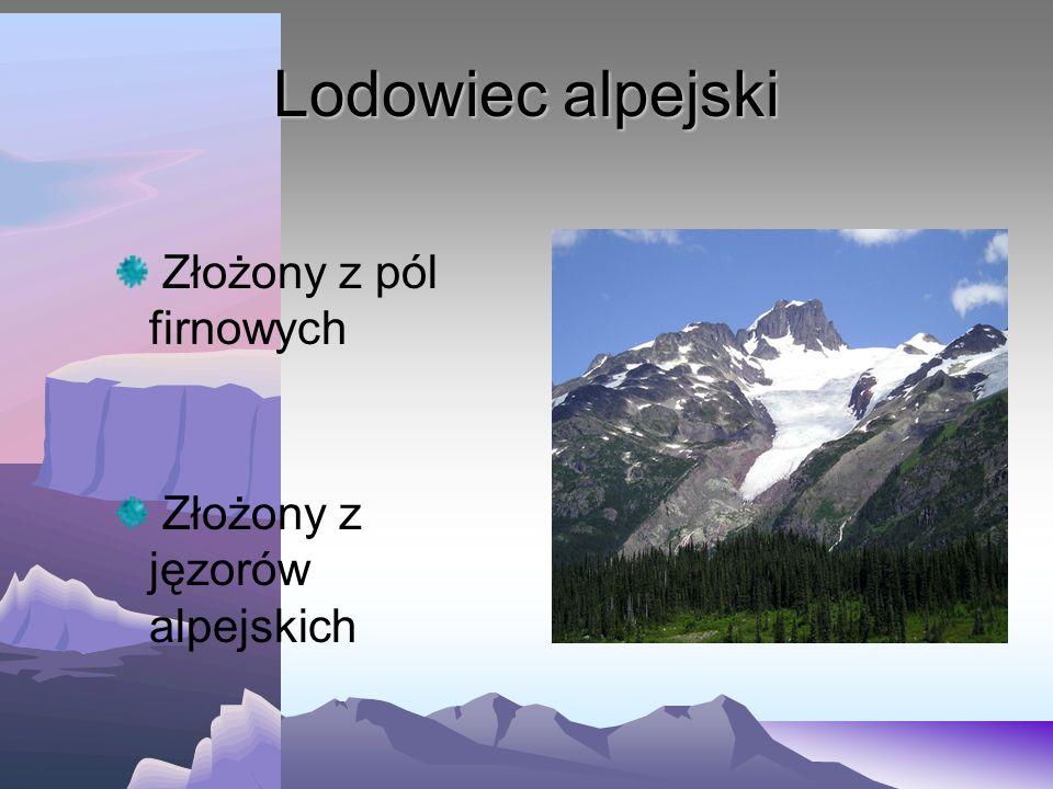 Lodowiec alpejski Złożony z pól firnowych Złożony z jęzorów alpejskich