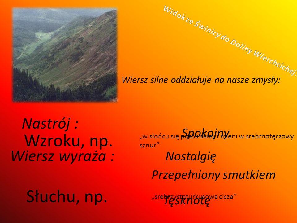 Widok ze Świnicy do Doliny Wierchcichej.