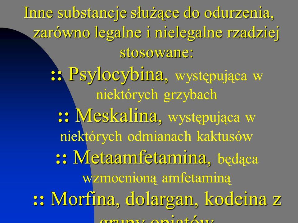 Inne substancje służące do odurzenia, zarówno legalne i nielegalne rzadziej stosowane: :: Psylocybina, występująca w niektórych grzybach :: Meskalina, występująca w niektórych odmianach kaktusów :: Metaamfetamina, będąca wzmocnioną amfetaminą :: Morfina, dolargan, kodeina z grupy opiatów :: Bieluń dziędzierzawa z grupy halucynogenów :: Gałka muszkatołowa, kardamon z grupy przypraw :: Syropy na kaszel np.: tussipect z grupy leków :: Środki wziewne np.: butapren, gaz do zapalniczek