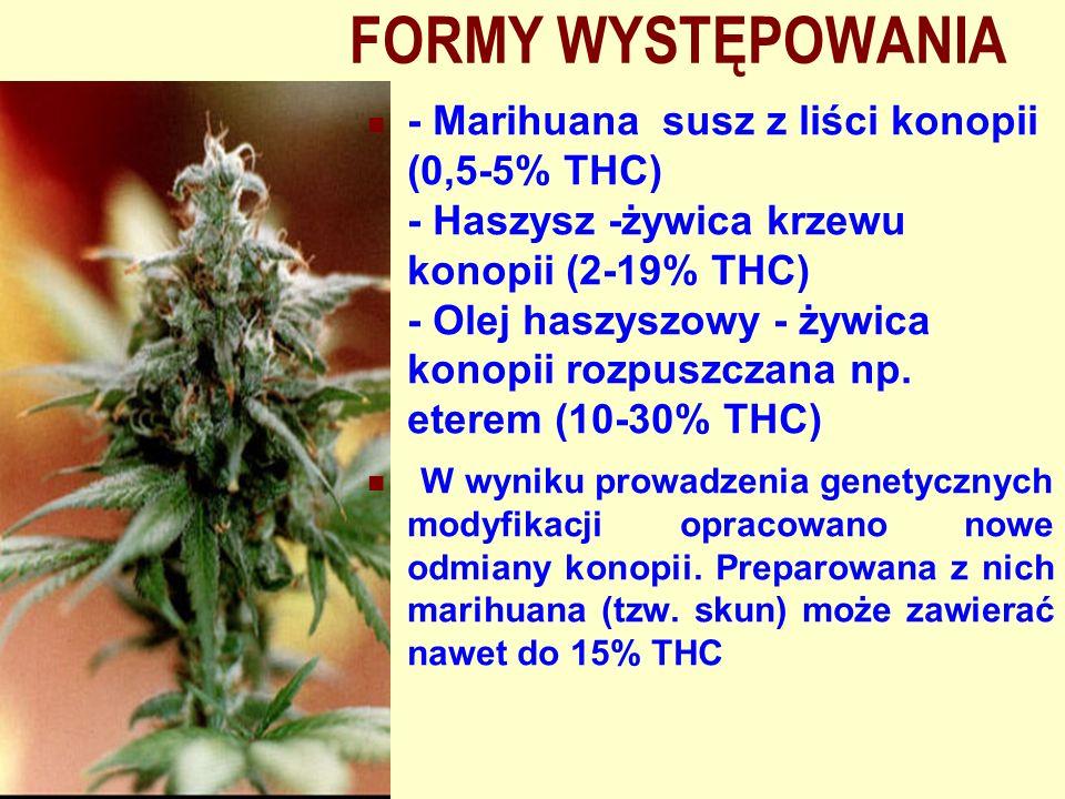 FORMY WYSTĘPOWANIA