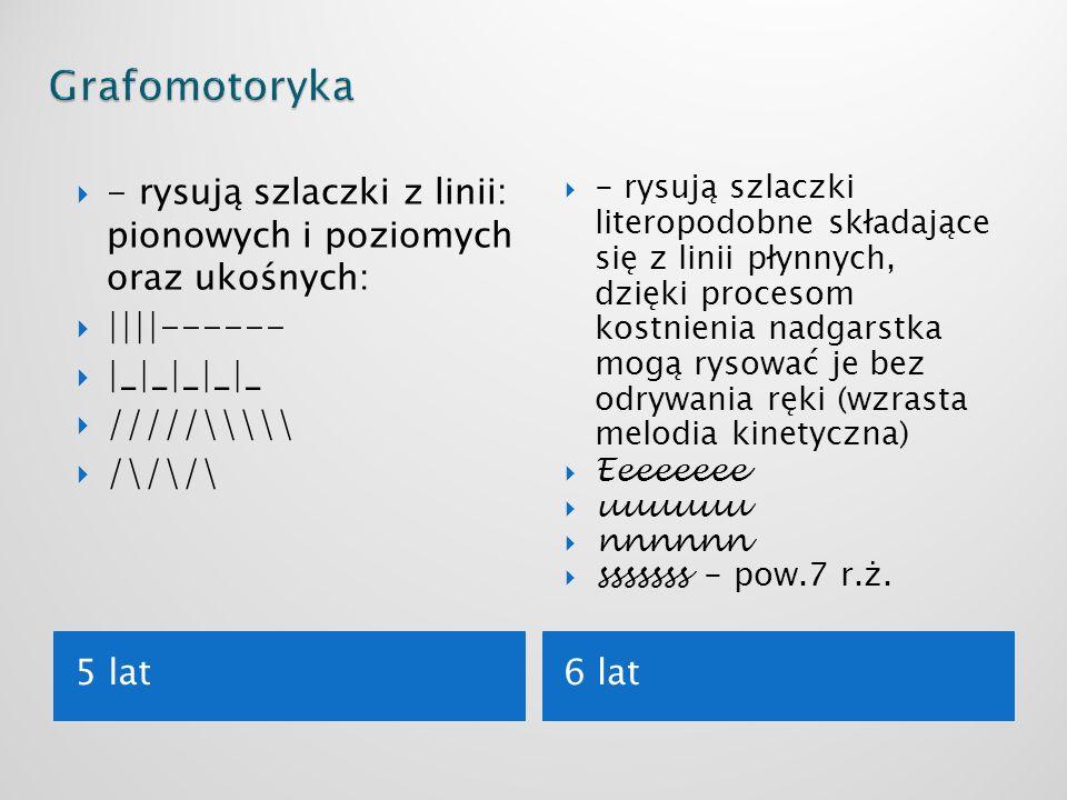 Grafomotoryka - rysują szlaczki z linii: pionowych i poziomych oraz ukośnych: ||||------ |_|_|_|_|_.