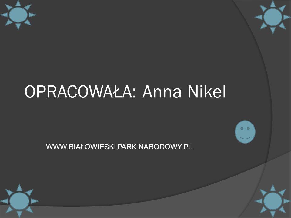 OPRACOWAŁA: Anna Nikel