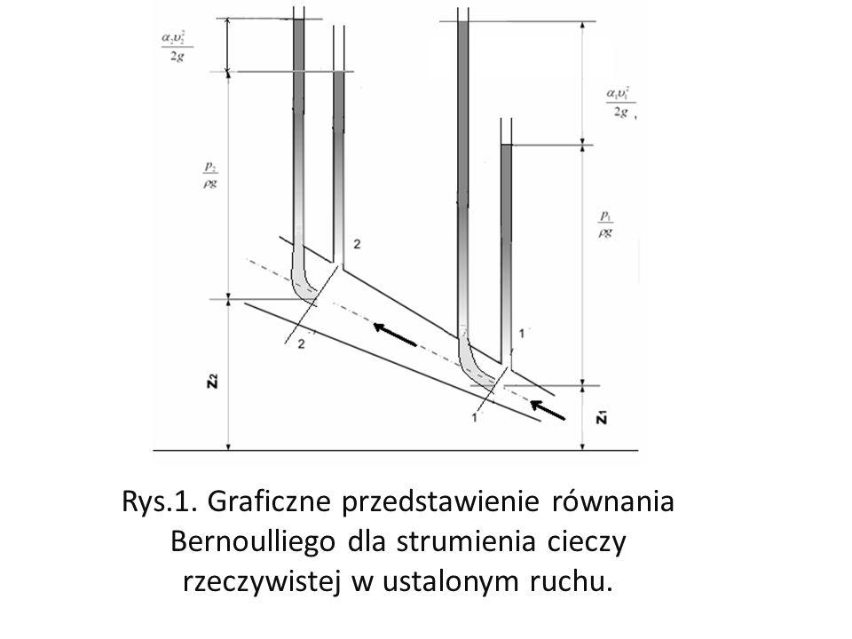 Rys.1.