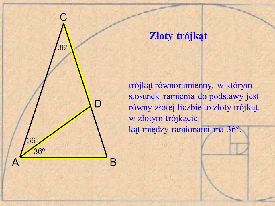 36º A. C. B. D. Złoty trójkąt. trójkąt równoramienny, w którym stosunek ramienia do podstawy jest równy złotej liczbie to złoty trójkąt.