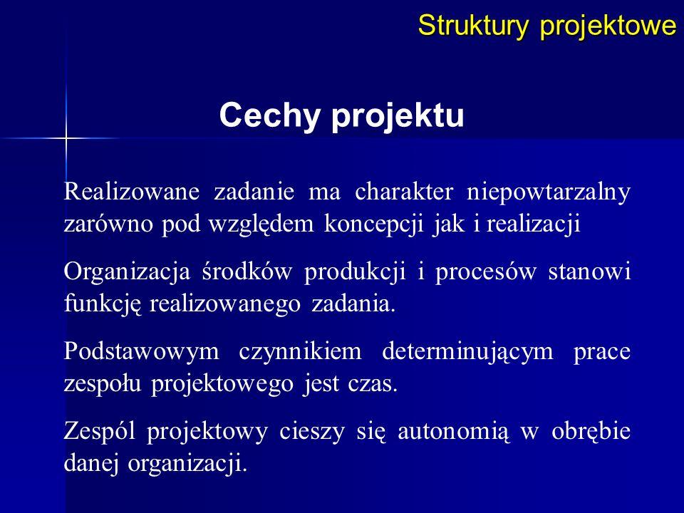 Cechy projektu Struktury projektowe