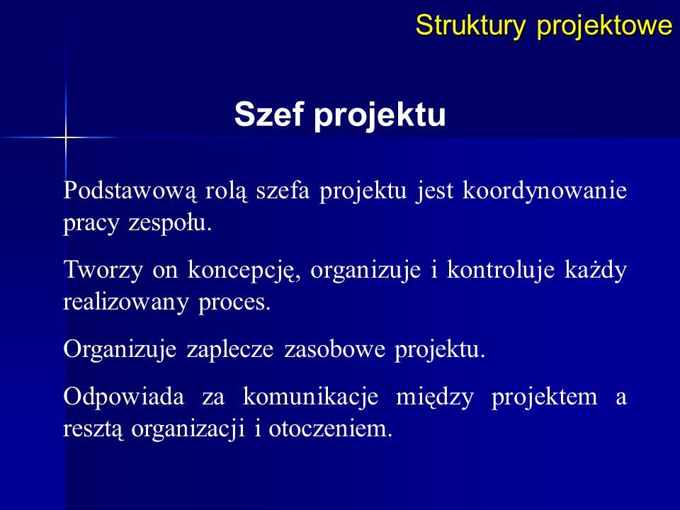 Szef projektu Struktury projektowe