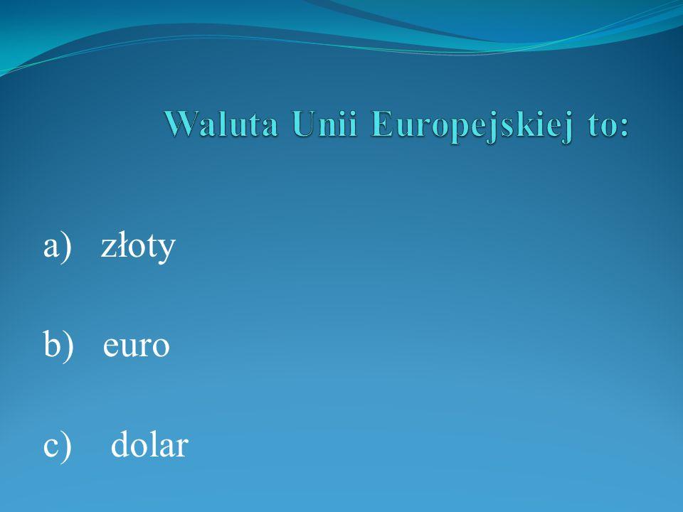 Waluta Unii Europejskiej to: