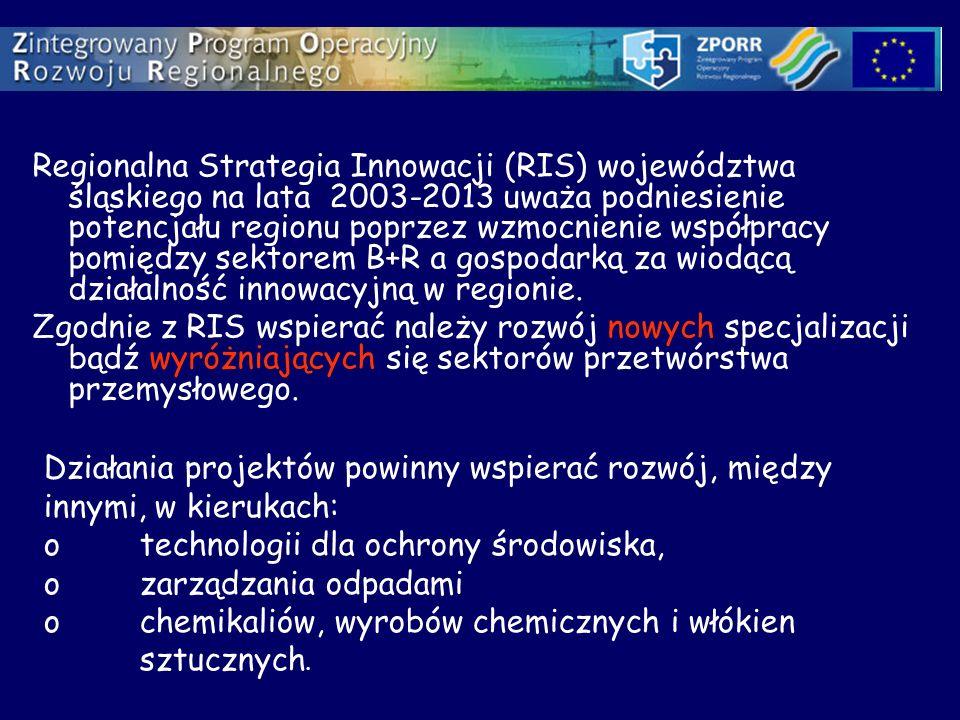 Regionalna Strategia Innowacji (RIS) województwa śląskiego na lata 2003-2013 uważa podniesienie potencjału regionu poprzez wzmocnienie współpracy pomiędzy sektorem B+R a gospodarką za wiodącą działalność innowacyjną w regionie.
