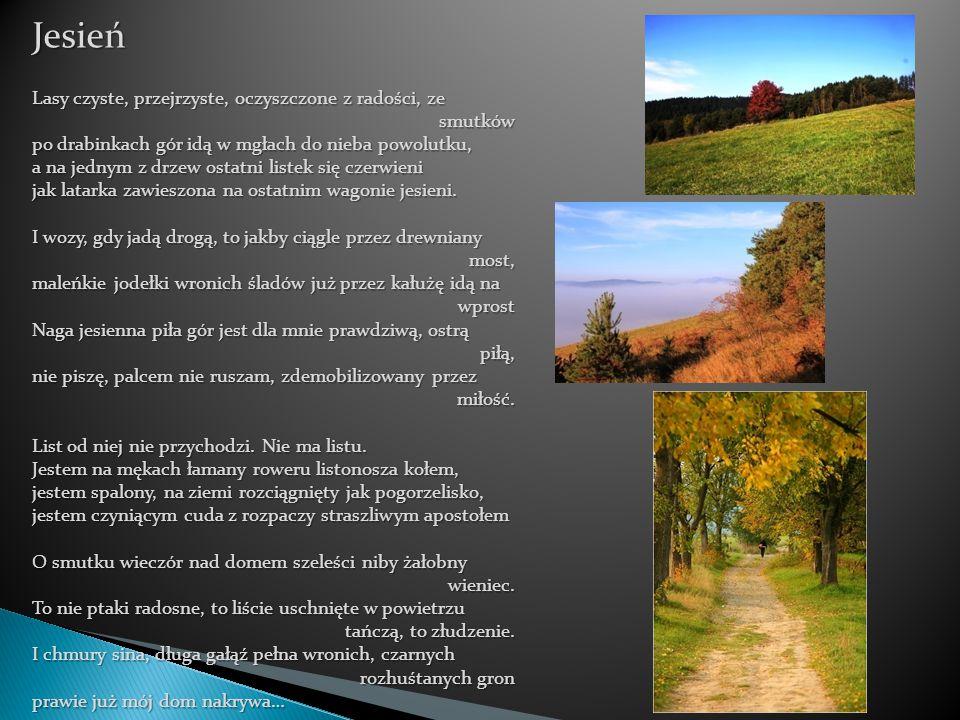 Jesień Lasy czyste, przejrzyste, oczyszczone z radości, ze smutków