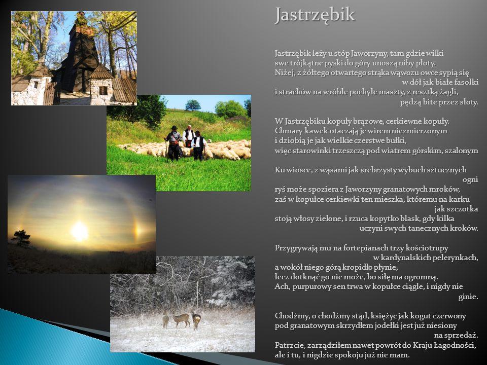 Jastrzębik Jastrzębik leży u stóp Jaworzyny, tam gdzie wilki