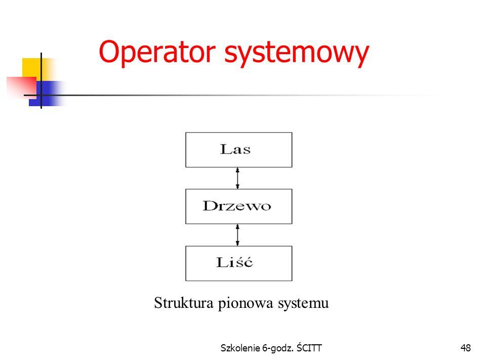 Struktura pionowa systemu